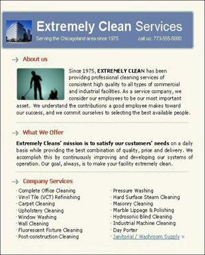 Make Money Cleaning 101, Flyer Wording